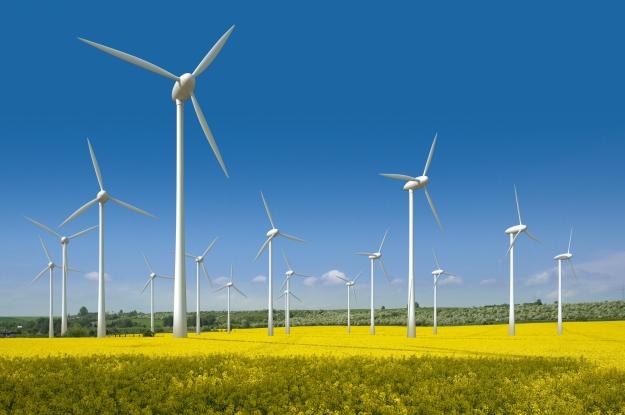 honda-windfarm